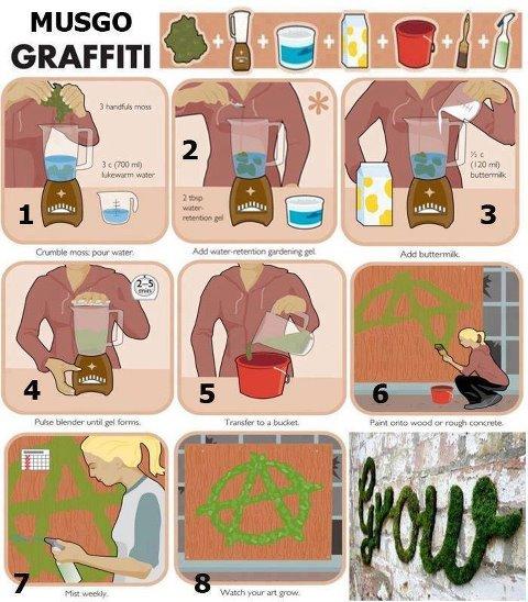 DIY Moss Graffiti | LIVE LIGHT BEING